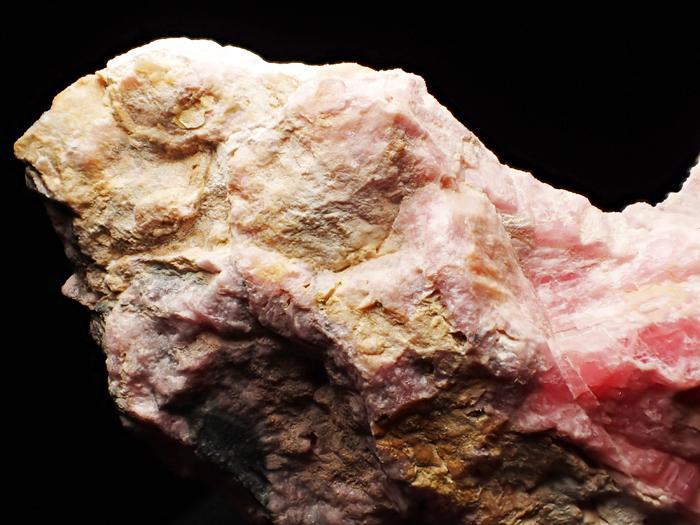 アルゼンチン産ロードクロサイト (Rhodochrosite / Argentina)-photo9