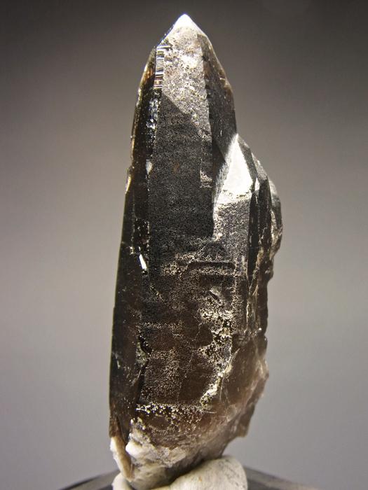 岐阜県蛭川田原産 煙水晶&白雲母 (Smoky Quartz & Muscovite / Japan)-photo3