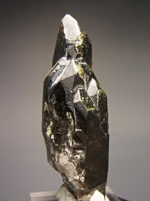 岐阜県蛭川田原産 煙水晶&白雲母 (Smoky Quartz & Muscovite / Japan)-photo5