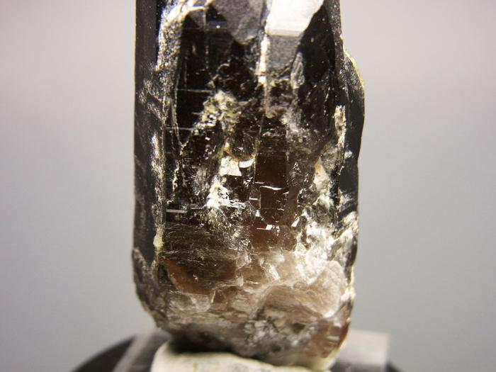 岐阜県蛭川田原産 煙水晶&白雲母 (Smoky Quartz & Muscovite / Japan)-photo23