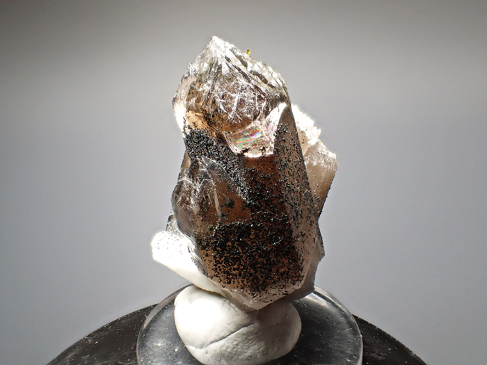 ポーランド産スモーキークォーツ、ベイブナイト&スチェゴマイト (Smoky Quartz, Bavenite & Strzegomite / Poland)-photo1