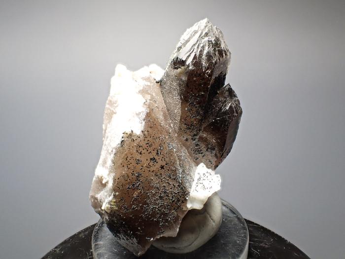 ポーランド産スモーキークォーツ、ベイブナイト&スチェゴマイト (Smoky Quartz, Bavenite & Strzegomite / Poland)-photo5