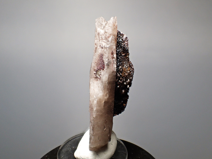 コロラド産スモーキークォーツ&ゲーサイト (Smoky Quartz & Goethite/ Colorado)-photo6