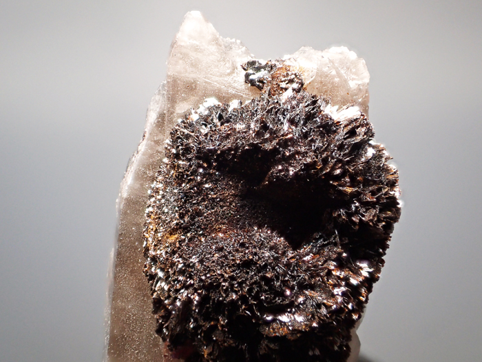 コロラド産スモーキークォーツ&ゲーサイト (Smoky Quartz & Goethite/ Colorado)-photo8