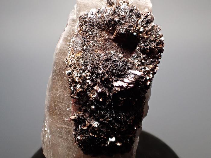 コロラド産スモーキークォーツ&ゲーサイト (Smoky Quartz & Goethite/ Colorado)-photo11